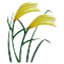 Blades Of Grass Smiley Face, Emoticon